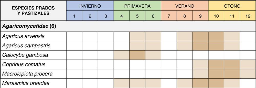 Calendario de fructificación de setas de prados y pastizales